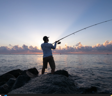 Teignmouth Fishing