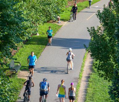 Cycling And Walking Path
